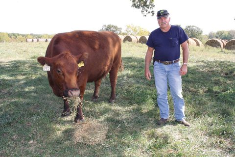 Fighting Fescue Issues