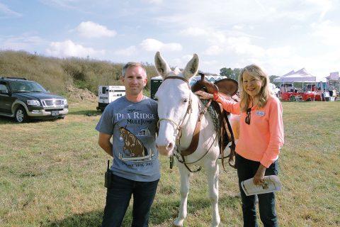 Jumping Mules Garner Their Own Festival