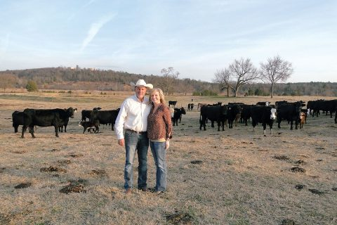 A Diverse Cattle Operation