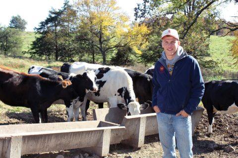 A Future in Dairy