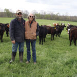 A New Way of Raising Cattle